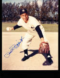 Phil Rizzuto Signed 8x10 Yankees