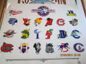 1993 professional baseball Minor league 29 teams promo plastic poster  b6