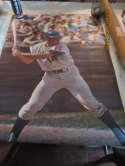 Ron Swoboda mets 1968 Sports Illustrated poster