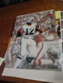 Joe Namath New York Jets passing  large photo 16x20
