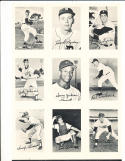 Rare 1969 Topps Deckle Edge uncut Card sheet Carl Yastrzemski & 8 not issued!