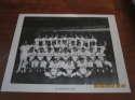 1967 Houston Astros Team Photo b&w 8x10 card