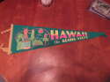 Hawaii the aloha state green pennant