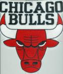 1982 - 1994 Chicago Bulls large bulls  jersey type patch 9
