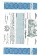 Florida Panthers Stock Certificate